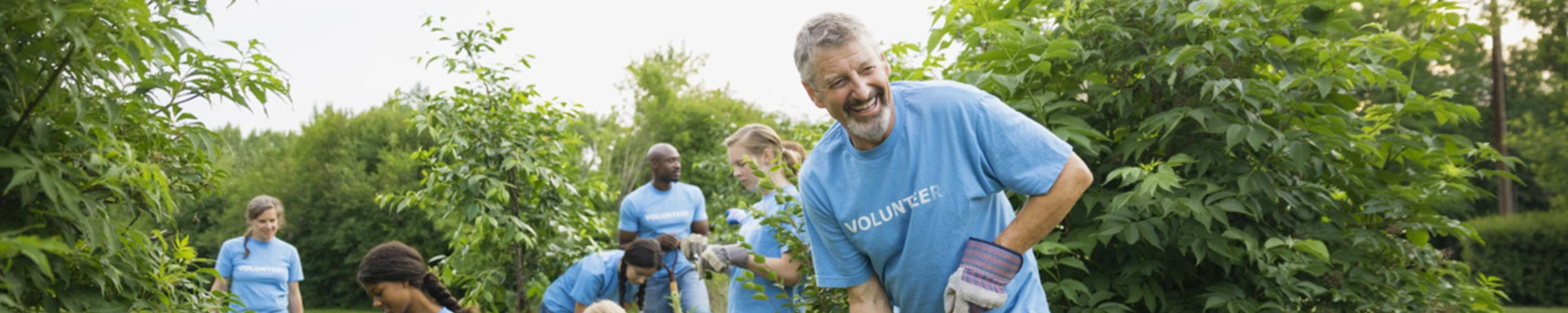 Male volunteer working at a gardening project